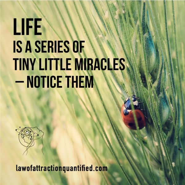 Life is a series